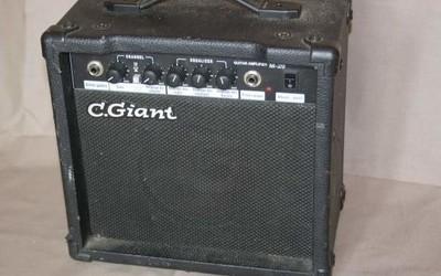 C.Giant M20