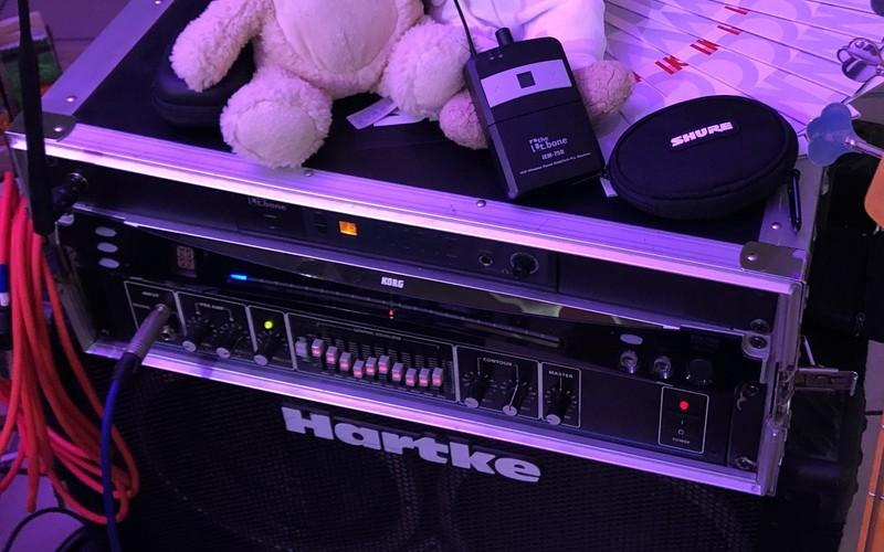 Hartke H3500
