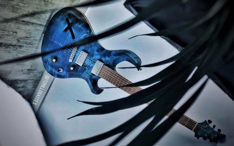 Torillo Basses Custom Guitar Stefan Hartung